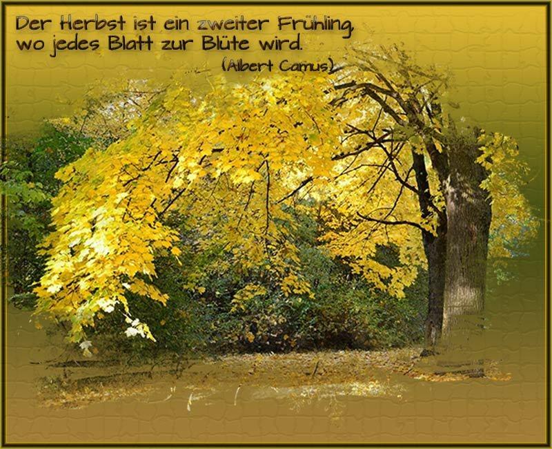 An den Beitrag angehängtes Bild: http://img12.dreamies.de/img/549/b/vcpmhh88p4d.jpg