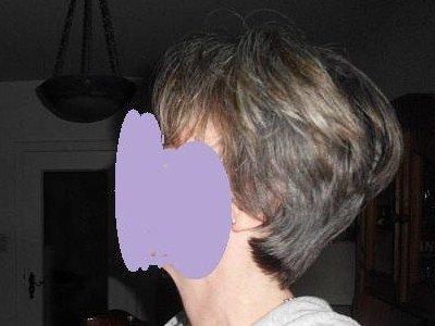 Wilde Lust Auf Graue Haare   Seite 88